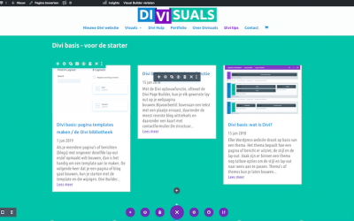 Divi basis: de Visual Builder