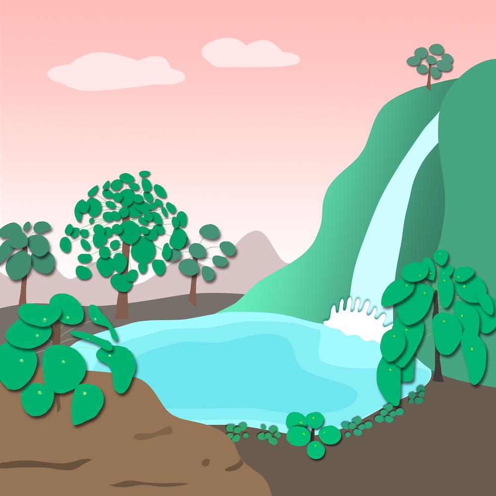 pilea forest